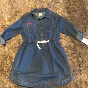Girls Carter Jean Dress